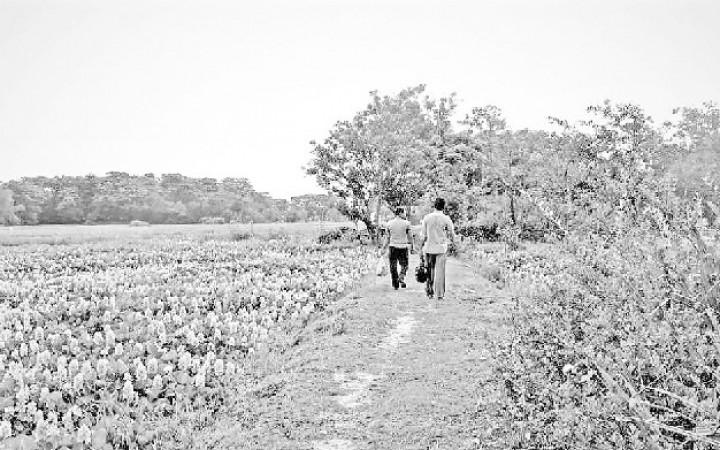 বঞ্চনার সাক্ষী বাসাইলের দুইটি গ্রাম