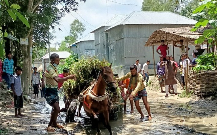 উন্নয়ন বঞ্চিত নাগরপুরের সারোটিয়া গাজি ও পাছ আরড়া গ্রামবাসী