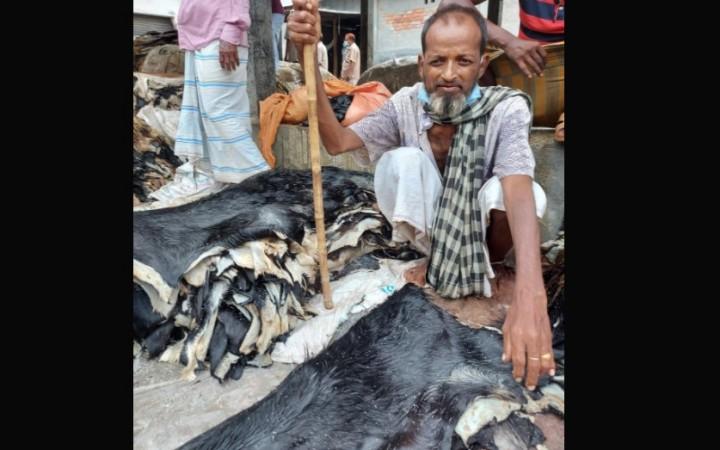 ঘাটাইলে ১৯৫ টাকা বিনিয়োগে পশুর চামড়ার দাম ১০০ টাকা