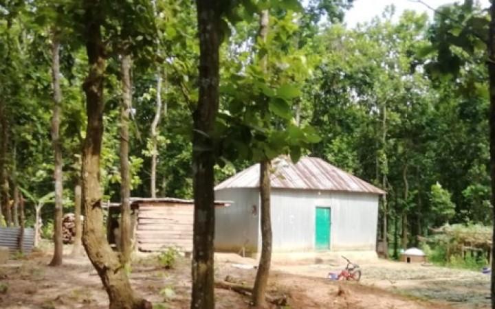 টাঙ্গাইলে এক বছরে কোটিপতি বন প্রহরী (পর্ব-১)